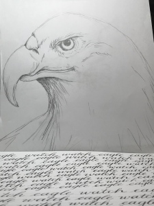 eagle watch and calligraphy practice